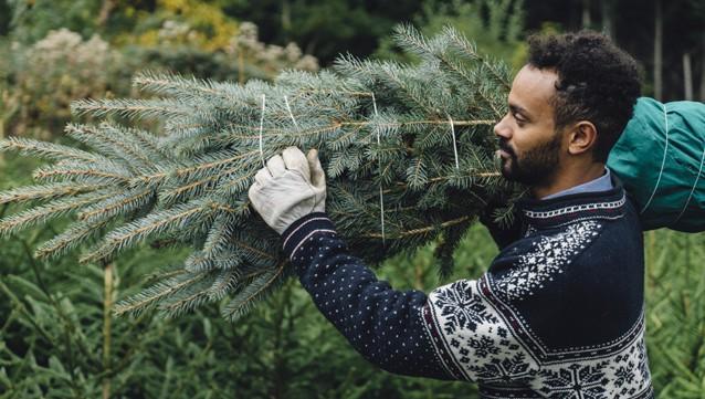 Emploi Noël
